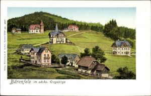 Ak Bärenfels Altenberg im Erzgebirge, Ansicht des Ortes, Wohnhäuser