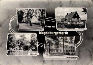 Ak Magdeburgerforth Möckern im Jerichower Land, Forsthaus, Mühlentich, Betriebsberufsschule