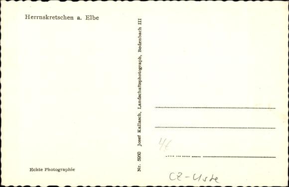 Ak Hřensko Herrnskretschen Elbe Reg. Aussig, Teilansicht, Ort im Tal 1