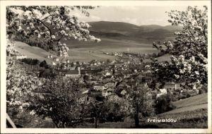 Ak Gozdnica Freiwaldau Schlesien, Totalansicht vom Ort, Baumblüte