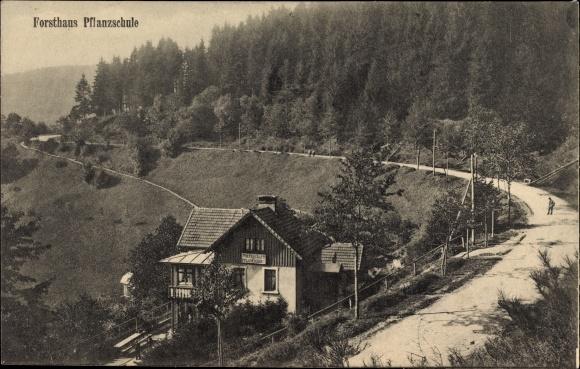 Ak Sainte Marie aux Mines Markirch Elsass Haut Rhin, Forsthaus Pflanzschule