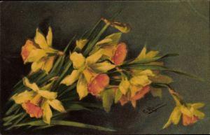 Künstler Ak Klein, Catharina, Gelbe Blüten, Blumen, Narzissen