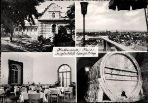Ak Halberstadt in Sachsen Anhalt, Jagdschloss Spiegelsberge mit großem Fass, Blick von der Terrasse