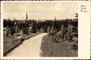 Ak Löbau in Sachsen, In den Anlagen, Wegpartie mit Blick zur Stadt, Kirche