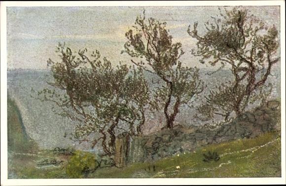 Künstler Ak Welti, Albert, Am Haag, Landschaftsszene mit knorrigen Bäumen