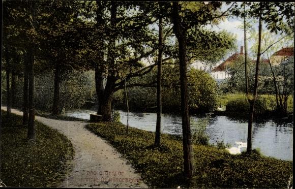 Ak Bad Oldesloe in Schleswig Holstein, Partie im Bürgerpark