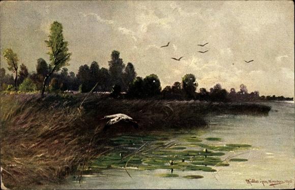 Künstler Ak Müller, M. jun., Storch über dem Wasser fliegend