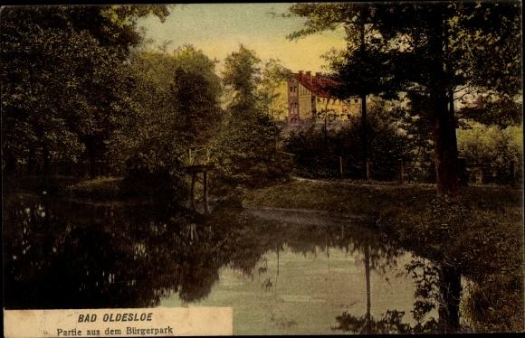 Ak Bad Oldesloe in Schleswig Holstein, Partie aus dem Bürgerpark