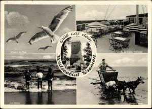 Ak Wremen Wurster Nordseeküste Landkreis Cuxhaven, Ochsenturm, Möwen, Terrasse, Wattenfischer
