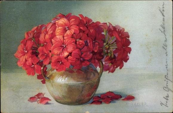 Künstler Ak Haller, A., Rote Blumen in einer Vase, Stillleben, Meissner und Buch