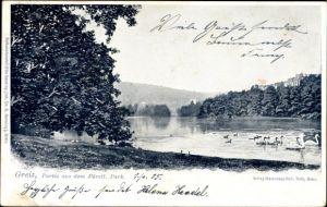 Ak Greiz in Thüringen, Partie aus dem Fürstl. Park