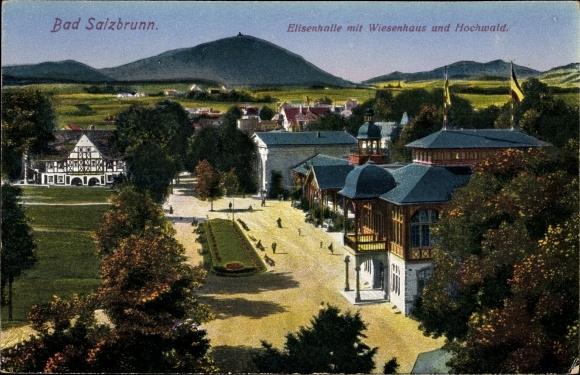 Ak Szczawno Zdrój Bad Salzbrunn Schlesien, Elisenhalle mit Wiesenhaus und Hochwald