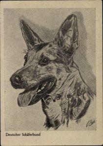 Künstler Ak Deutscher Schäferhund mit geöffneter Schnauze, Hundeportrait