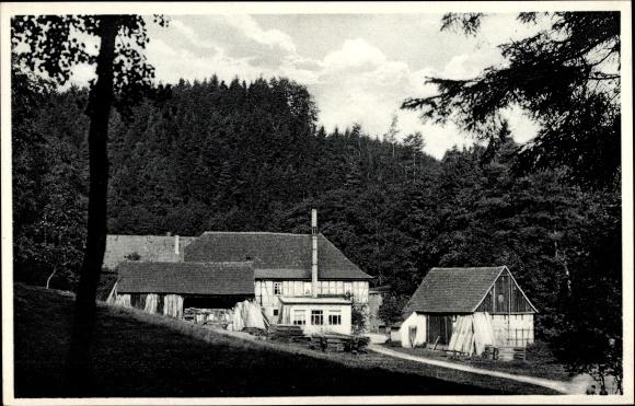 Ak Eisenberg im Saale Holzland Kreis, Waldhaus Froschmühle, Bes. Albert Haufe