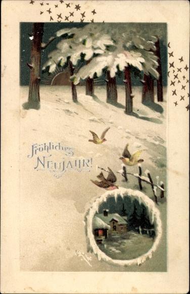Präge Litho Glückwunsch Neujahr, Sonnenuntergang, Vögel, Schnee, Sterne, Haus