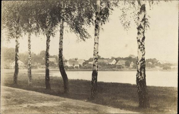 Foto Ak Storkow in der Mark Brandenburg, Straßenpartie, Baumreihe, Blick auf Ortschaft