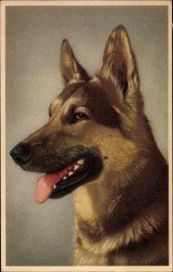 Künstler Ak Hundeportrait, Schäferhund mit heraushängender Zunge