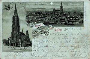 Mondschein Litho Ulm an der Donau Baden Württemberg, Das Münster, Stadtansicht von Norden