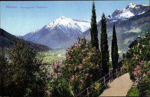 Ak Meran Merano Südtirol, Passeggiata Tappeiner, Wegpartie mit Ausblick ins Tal