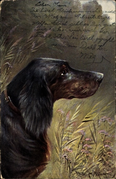 Künstler Ak Müller, Moritz jun., Seitliches Profil eines Hundes, Serie 1193 Rassehunde