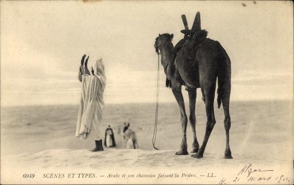 Ak Scenes et Types, Arabe et son chameau faisant la Prière, Araber und Kamel, Maghreb, Gebet