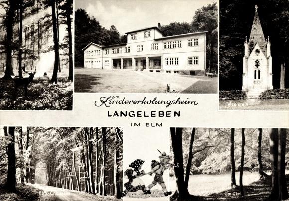Ak Langeleben Königslutter an der Elm, Kindererholungsheim, Waldpartie im Elm, Tetzelstein, Hirsch