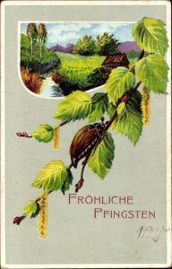 Präge Ak Glückwunsch Pfingsten, Maikäfer auf einem Birkenast
