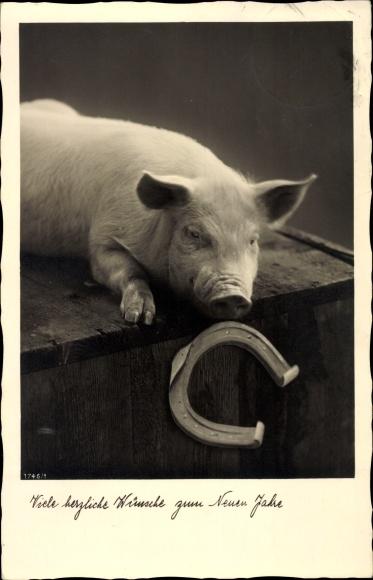 Ak Glückwunsch Neujahr Schwein Auf Einer Holzkiste Liegend