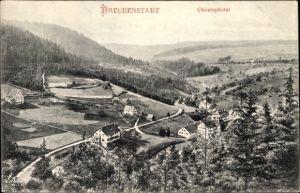 Ak Freudenstadt im Nordschwarzwald, Blick ins Christophstal, Ort