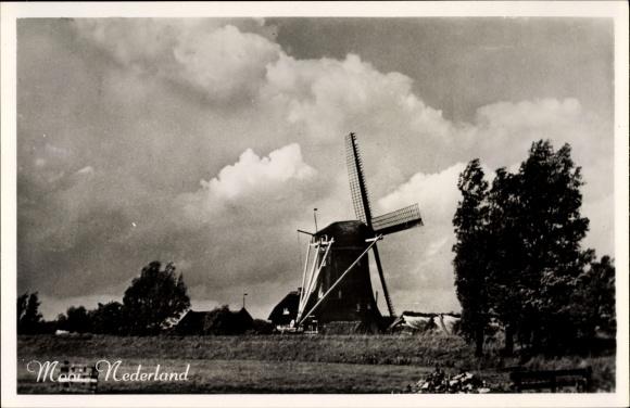 Ak Niederlande, Blick über ein Feld zu einer Windmühle