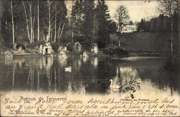 Ak Tervuren Flandern Flämisch Brabant,Chateau de Putdael, Schwäne auf einem Teich, Blick zum Schloss