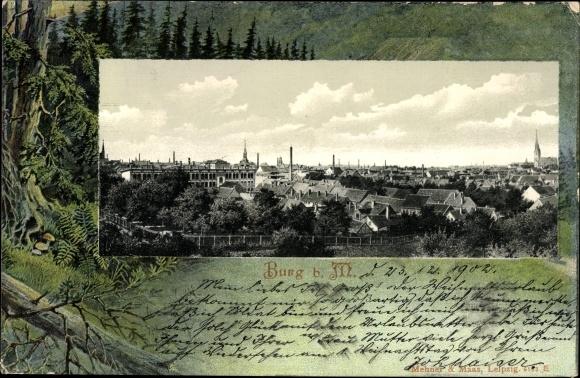 Passepartout Ak Burg am Main in Sachsen Anhalt, Blick auf die Stadt, Wald