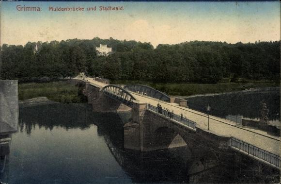 Ak Grimma in Sachsen, Blick über die Muldenbrücke zum Stadtwald