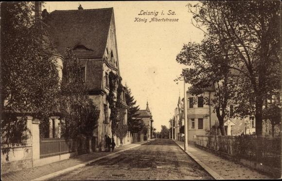 Ak Leisnig an der Freiberger Mulde Sachsen, Partie in der König Albert Straße