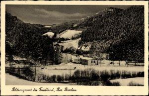Ak Sokołowsko Görbersdorf Schlesien, Blitzengrund, Winter