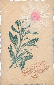 Stoff Ak Souvenir d'Amitié, Blume mit weißer Blüte