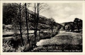 Ak Unterreichenbach Landkreis Calw, Partie an der Nagold, Landschaftsansicht