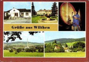 Ak Wilthen im Kreis Bautzen Sachsen, Jugendklub, Anlagen am Haus Bergland, Ort, Weinbrandherstellung