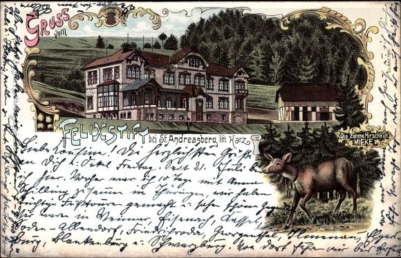 Litho St. Andreasberg Braunlage im Harz, Felixstift, Die zahme Hirschkuh Mieke