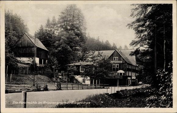 Ak Bad Schandau an der Elbe, Die Forstmühle im Krippengrund