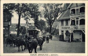 Ak Braunlage im Oberharz, Viehtrieb durch den Ort, Rinder, Hotel Berliner Hof, Straßenbahn