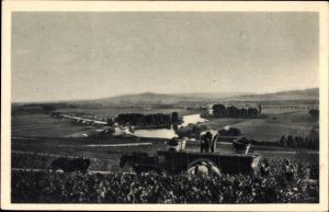 Ak Épernay Marne, Champagne Moet et Chandon, Scene de vendange a Hautvillers, Weinernte