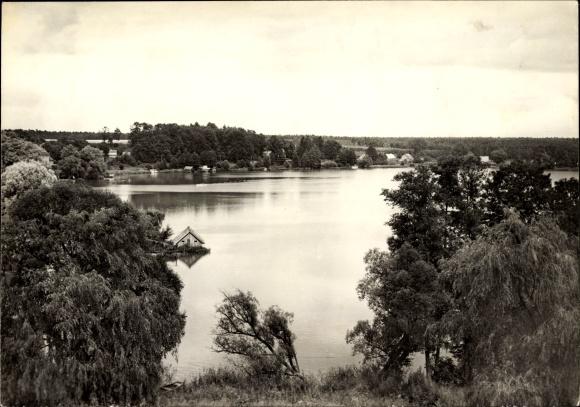 Ak Flecken Dorf Zechlin Rheinsberg, Blick auf den Schwarzen See