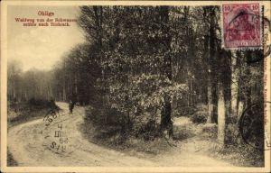 Ak Ohligs Solingen Bergisches Land, Waldweg von der Schwanenmühle nach Richrath