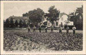 Ak Opende Friesland, Kolonie Wilhelminahoeve, Verpleeggebouw met Directeurswoning, Feldarbeiter