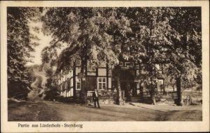Ak Extertal Nordrhein Westfalen, Partie aus Linderhofe Sternberg