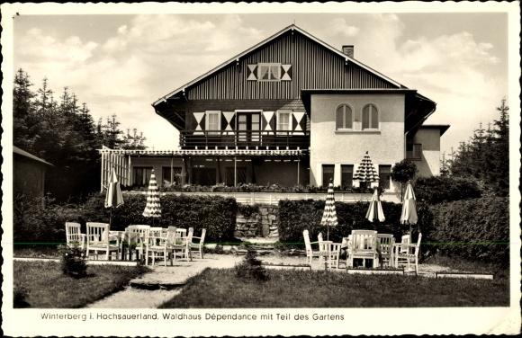 Ak Winterberg im Hochsauerlandkreis, Waldhaus Dépendance mit Teil des Gartens, Besitzer Richard Horn