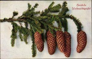 Ak Glückwunsch Weihnachten, Tannenzapfen an einem Zweig