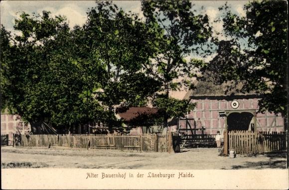 Ak Hanstedt in der Nordheide, Blick auf einen alten Bauernhof, Lüneburger Heide