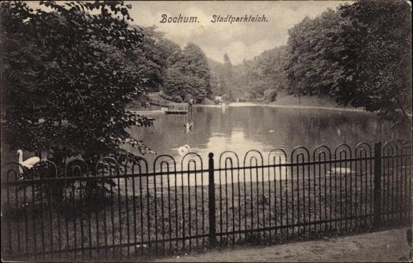 Ak Bochum im Ruhrgebiet, Blick auf den Stadtparkteich, Schwäne